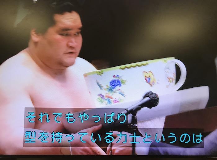照ノ富士優勝
